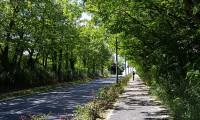 Longjumeau_ZAE-Vigne-Aux-Loups_Photo2_Agence-Hamelin