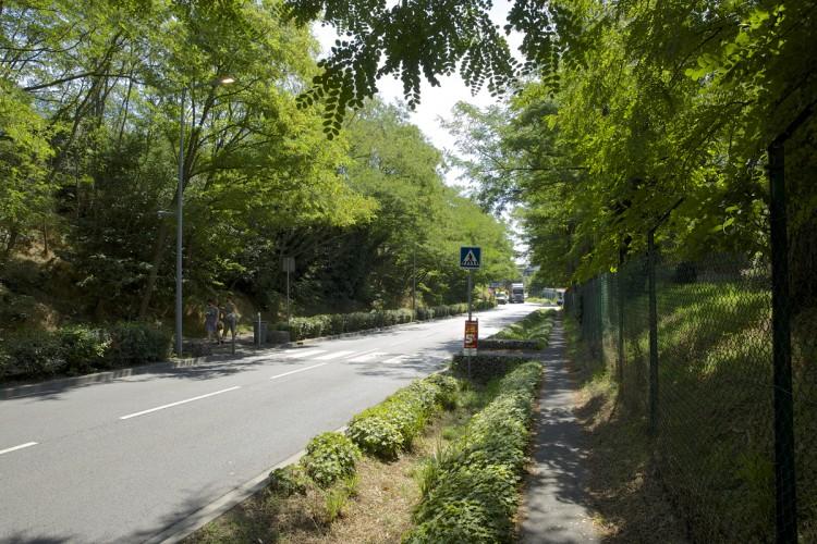Aménagement rue du Chemin Blanc